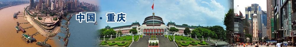 2015中国(重庆)商业街区行业年会暨
